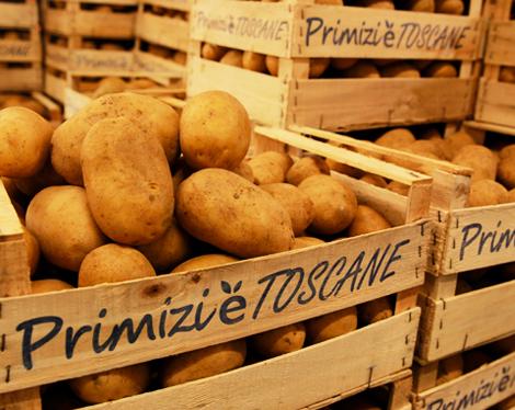 frutta-verdura-mercafir-Firenze